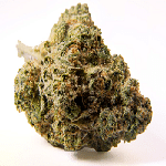 HOLY GRAIL STRAIN INDICA DOMINANT HYBRID EFFECTS TREATS REVIEWS