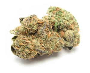 Bubble Gum Marijuana Strain Balanced Hybrid