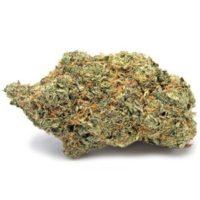 Sunset Sherbet Marijuana Strain