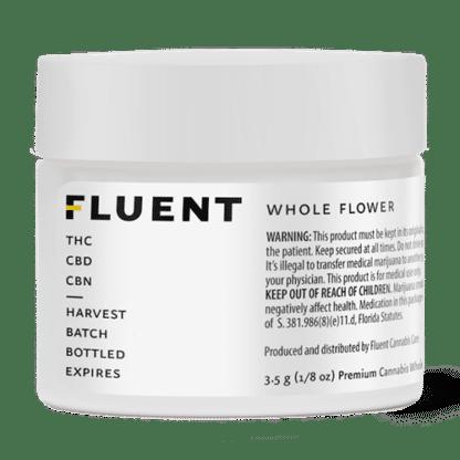 FLUENT WHOLE FLOWER1